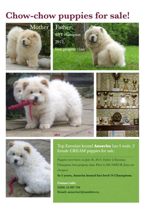 Puppies for sale! Kutsikad müügiks! Щенки в продаже!